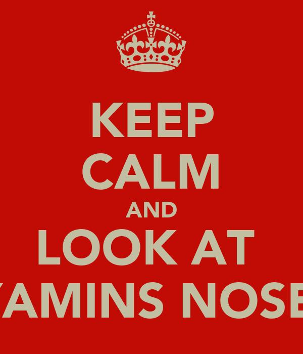 KEEP CALM AND LOOK AT  YAMINS NOSE