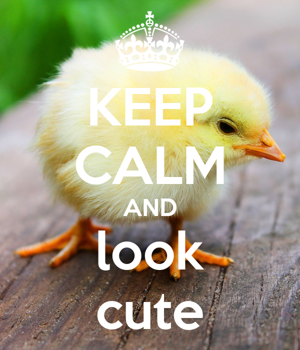 KEEP CALM AND look cute