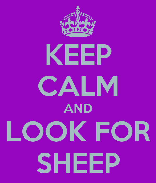 KEEP CALM AND LOOK FOR SHEEP