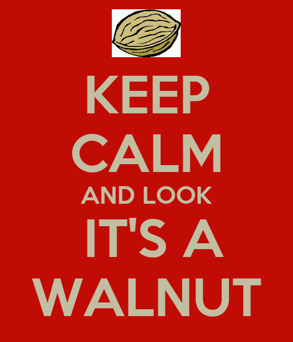 KEEP CALM AND LOOK  IT'S A WALNUT