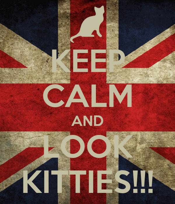 KEEP CALM AND LOOK KITTIES!!!