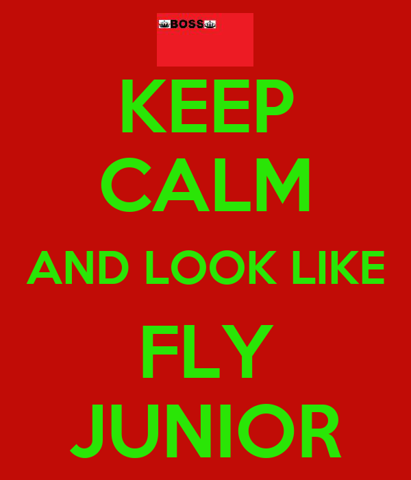 KEEP CALM AND LOOK LIKE FLY JUNIOR