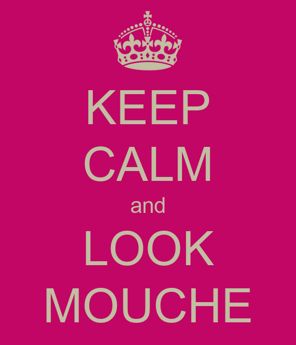 KEEP CALM and LOOK MOUCHE