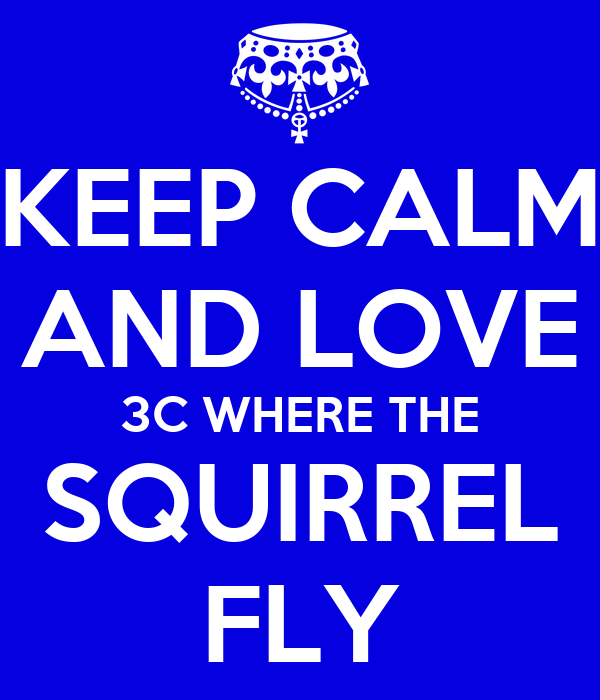 KEEP CALM AND LOVE 3C WHERE THE SQUIRREL FLY