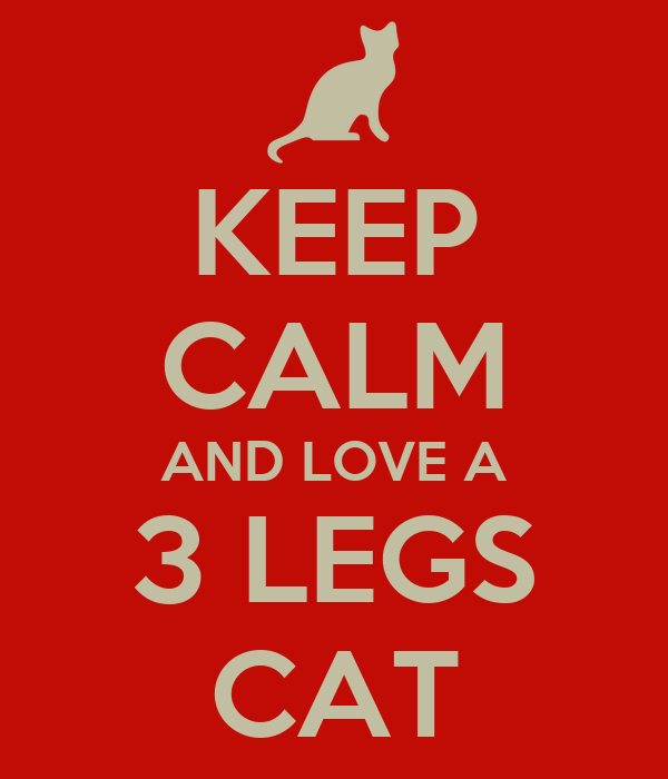 KEEP CALM AND LOVE A 3 LEGS CAT