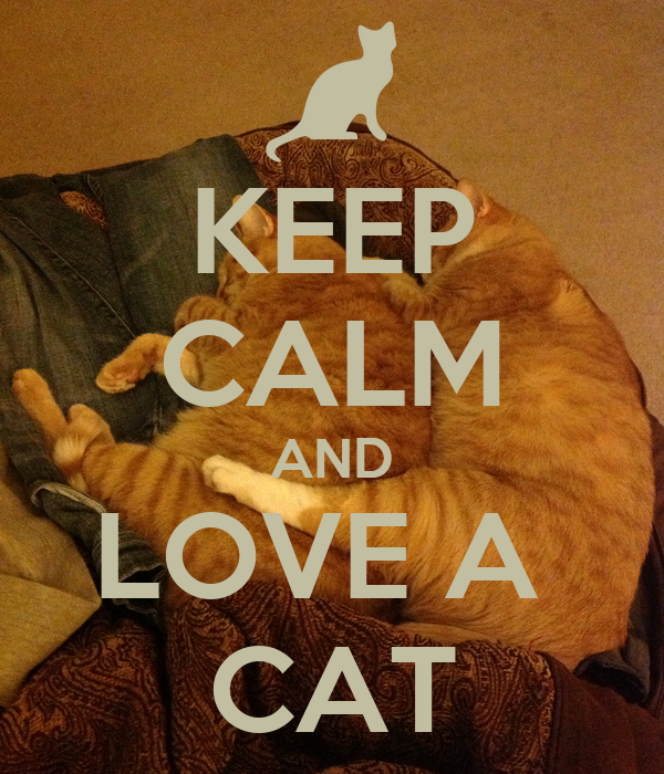 KEEP CALM AND LOVE A  CAT