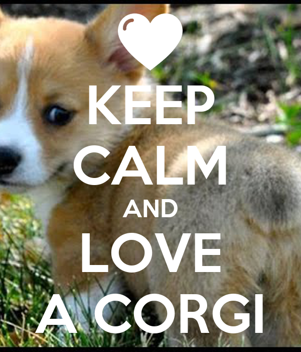KEEP CALM AND LOVE A CORGI