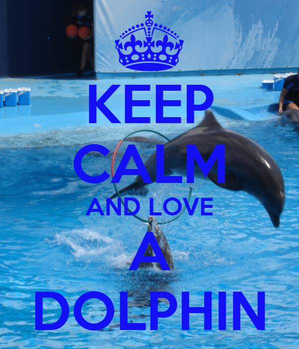 KEEP CALM AND LOVE A DOLPHIN