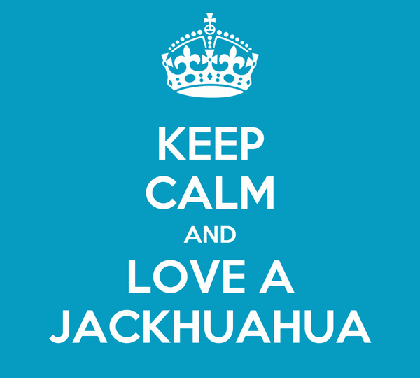 KEEP CALM AND LOVE A JACKHUAHUA
