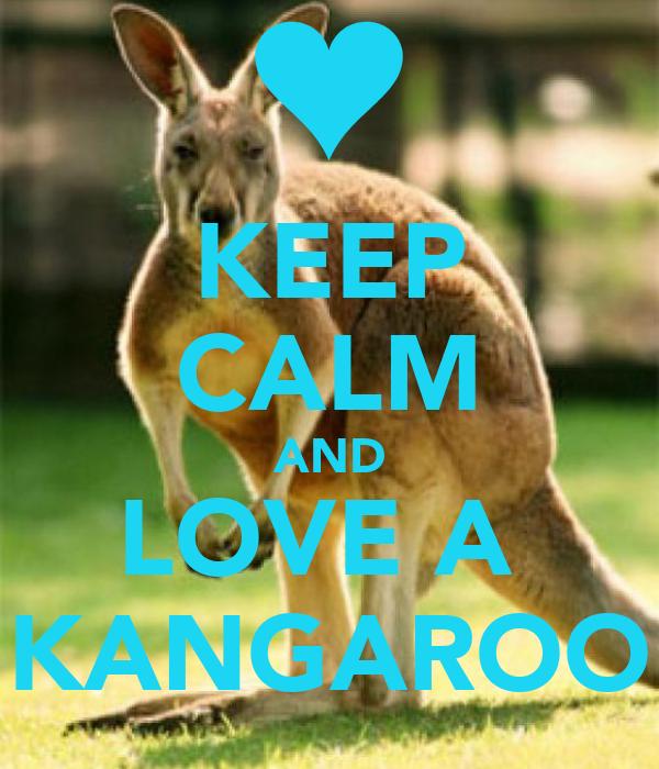 KEEP CALM AND LOVE A  KANGAROO