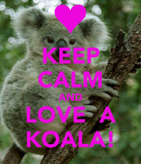 KEEP CALM AND LOVE  A KOALA!