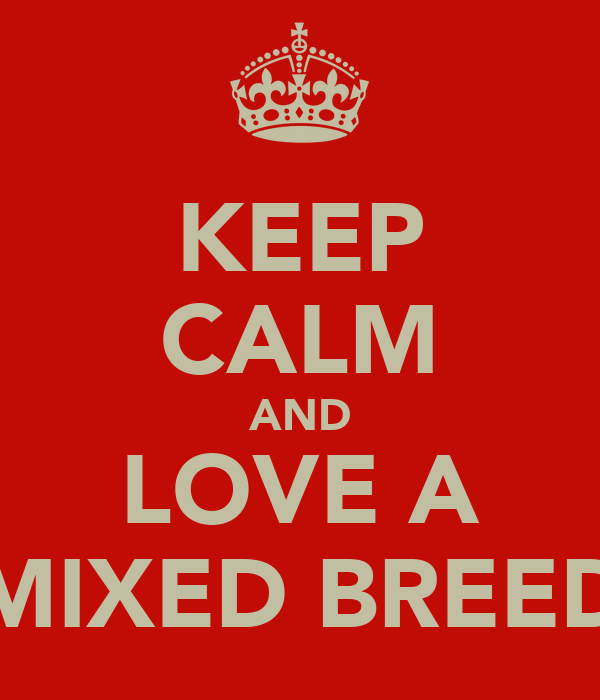 KEEP CALM AND LOVE A MIXED BREED
