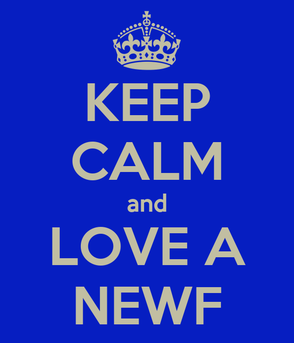 KEEP CALM and LOVE A NEWF