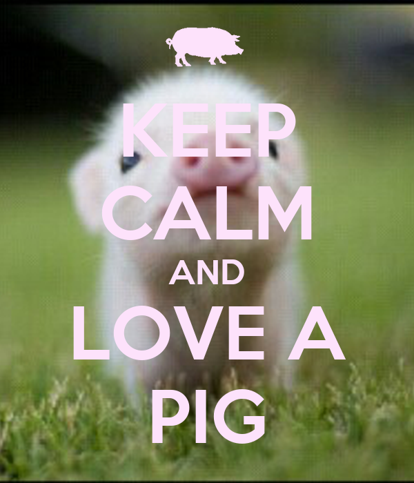 KEEP CALM AND LOVE A PIG