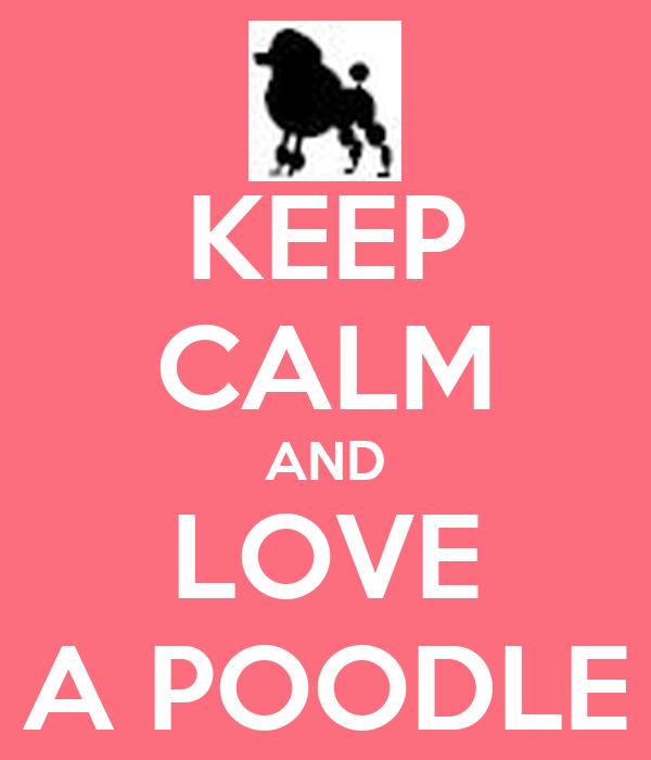 KEEP CALM AND LOVE A POODLE
