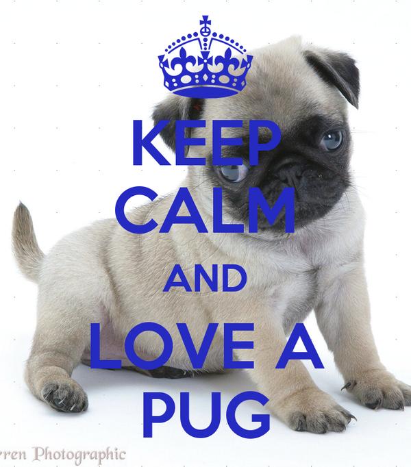 KEEP CALM AND LOVE A PUG