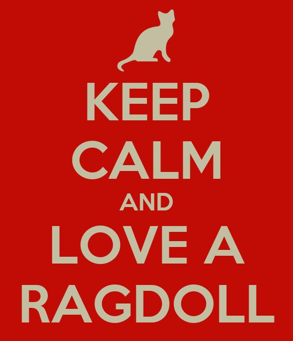 KEEP CALM AND LOVE A RAGDOLL