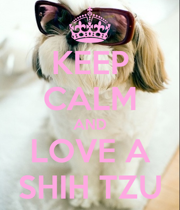 KEEP CALM AND LOVE A SHIH TZU