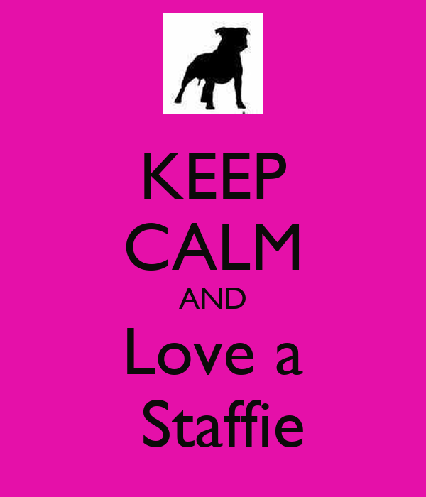 KEEP CALM AND  Love a   Staffie