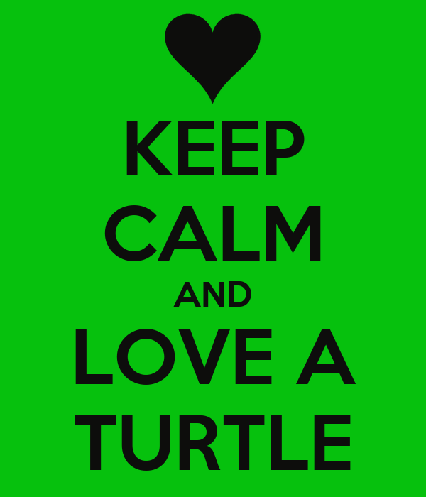 KEEP CALM AND LOVE A TURTLE