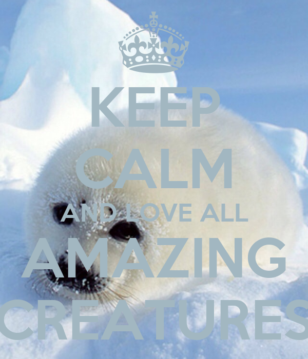 KEEP CALM AND LOVE ALL AMAZING CREATURES