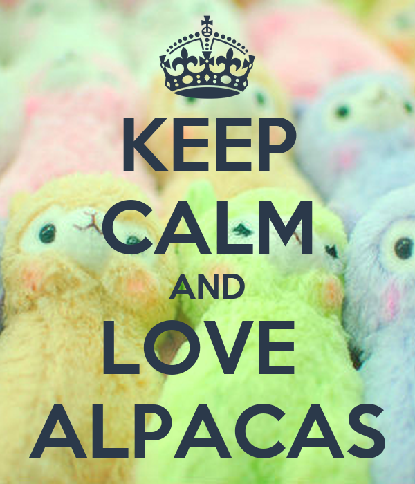 KEEP CALM AND LOVE  ALPACAS