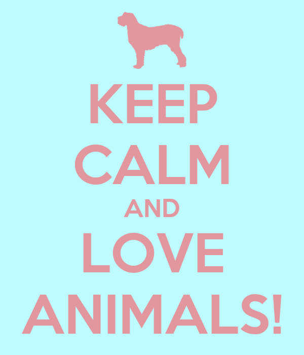 KEEP CALM AND LOVE ANIMALS!