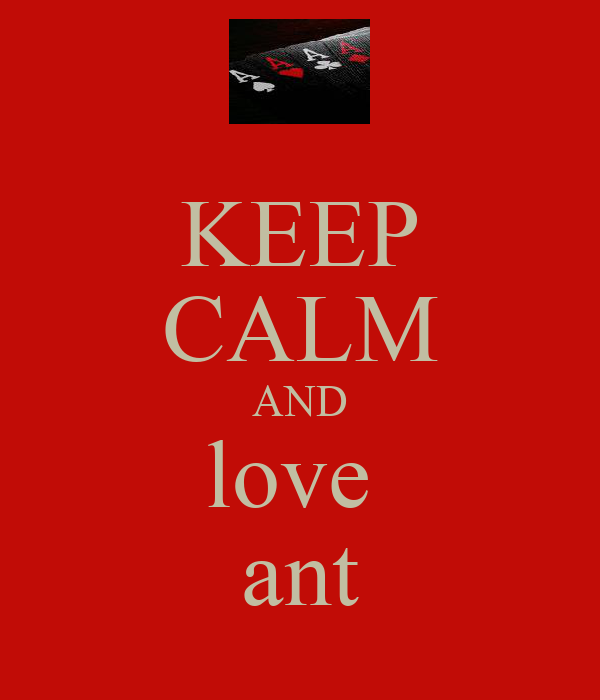 KEEP CALM AND love  ant