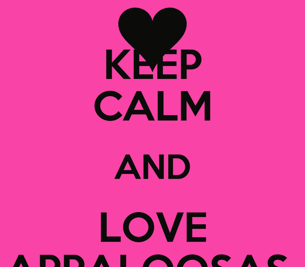 KEEP CALM AND LOVE APPALOOSAS