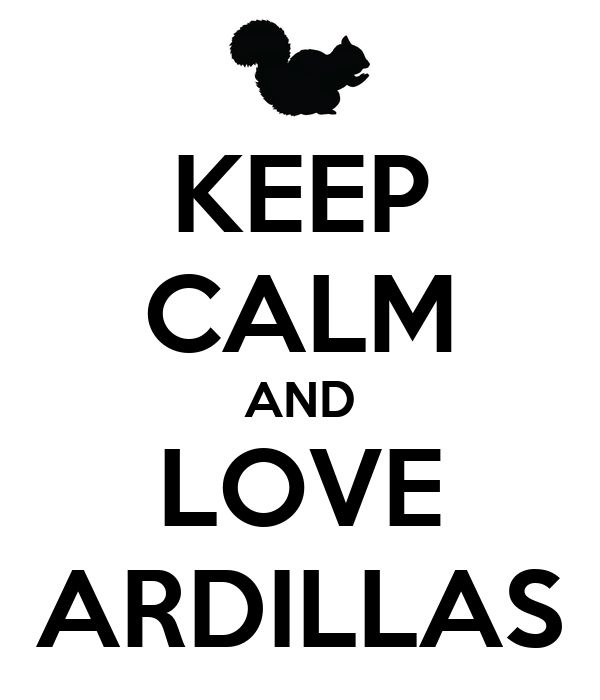 KEEP CALM AND LOVE ARDILLAS