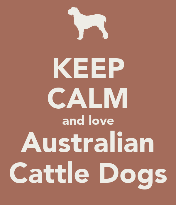 KEEP  CALM and love Australian Cattle Dogs