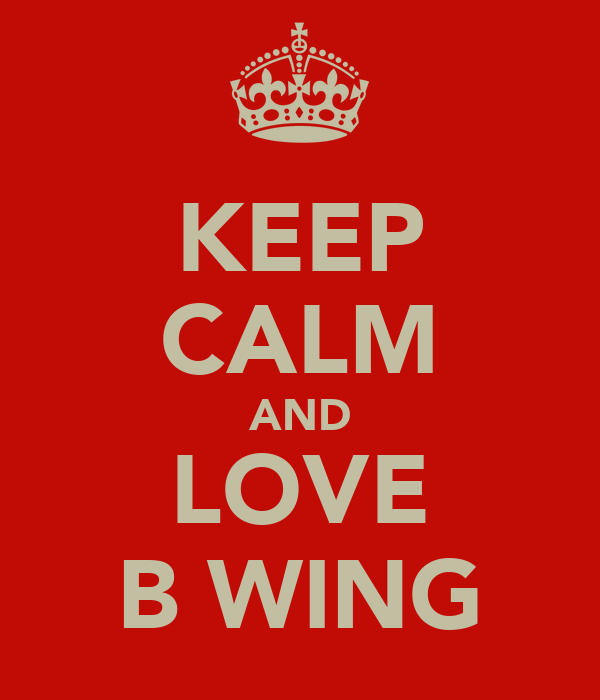 KEEP CALM AND LOVE B WING