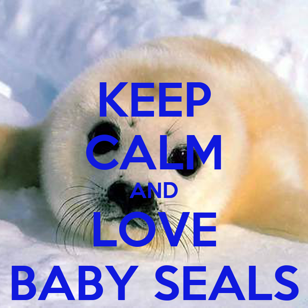 KEEP CALM AND LOVE BABY SEALS
