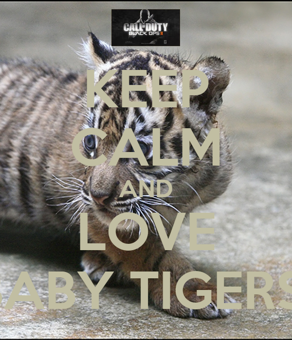 KEEP CALM AND LOVE BABY TIGERS