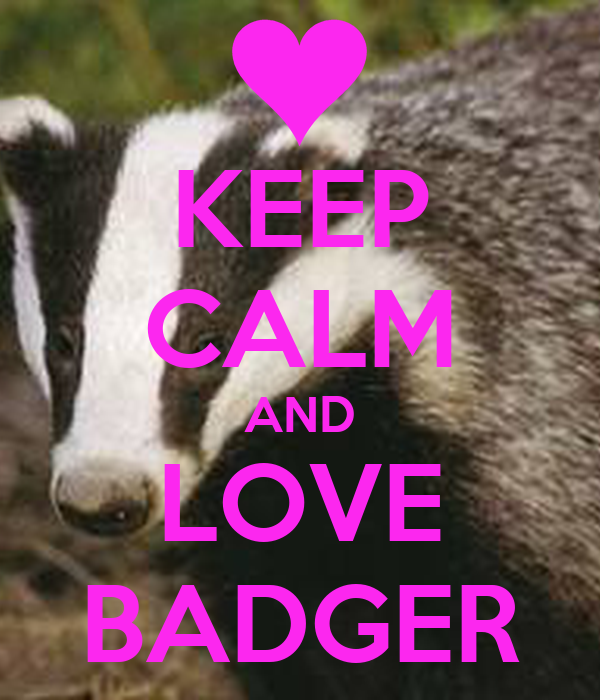 KEEP CALM AND LOVE BADGER