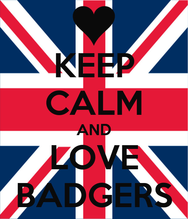 KEEP CALM AND LOVE BADGERS