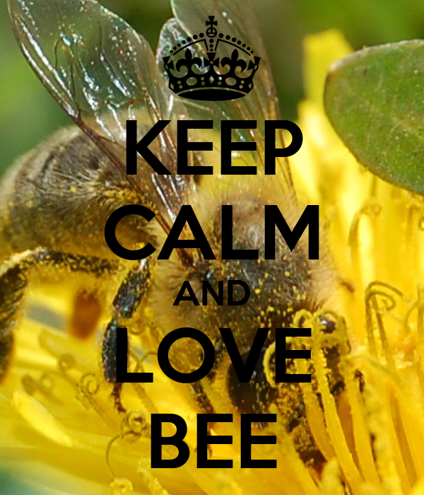 KEEP CALM AND LOVE BEE
