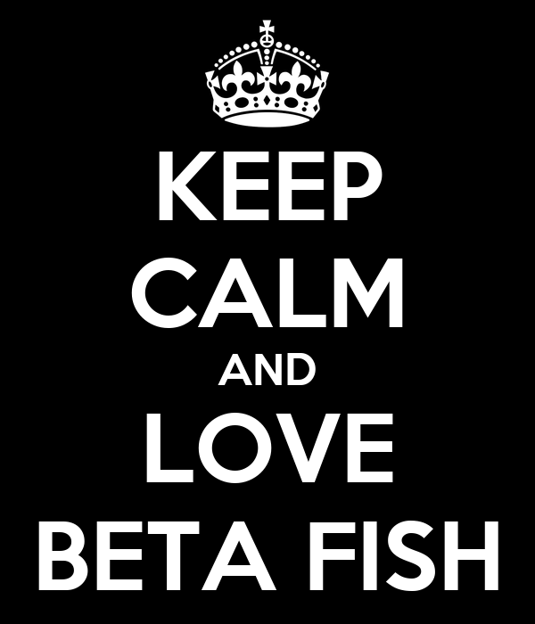 KEEP CALM AND LOVE BETA FISH