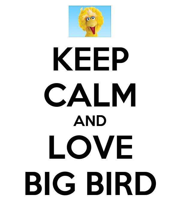 KEEP CALM AND LOVE BIG BIRD