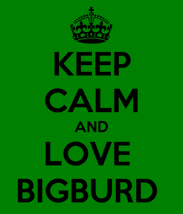 KEEP CALM AND LOVE  BIGBURD