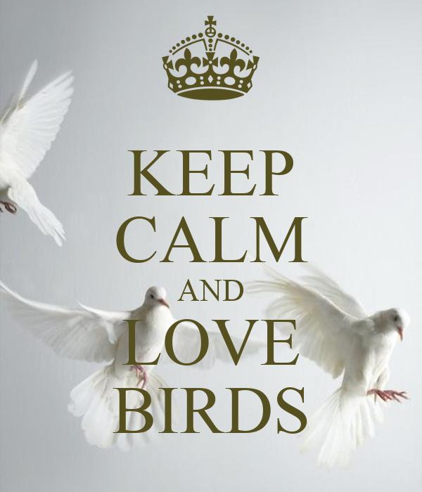 KEEP CALM AND LOVE BIRDS