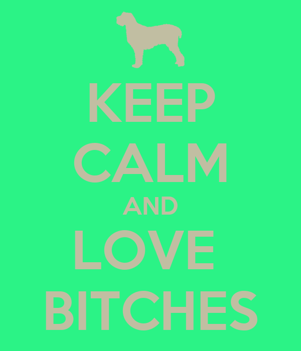 KEEP CALM AND LOVE  BITCHES