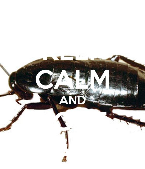 KEEP CALM AND LOVE BLATTA
