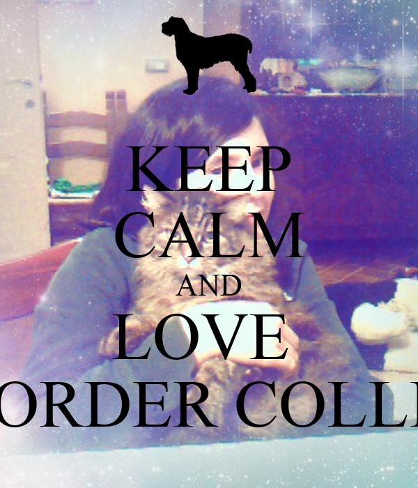 KEEP CALM AND LOVE  BORDER COLLIE