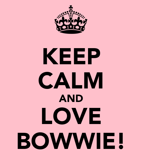 KEEP CALM AND LOVE BOWWIE!