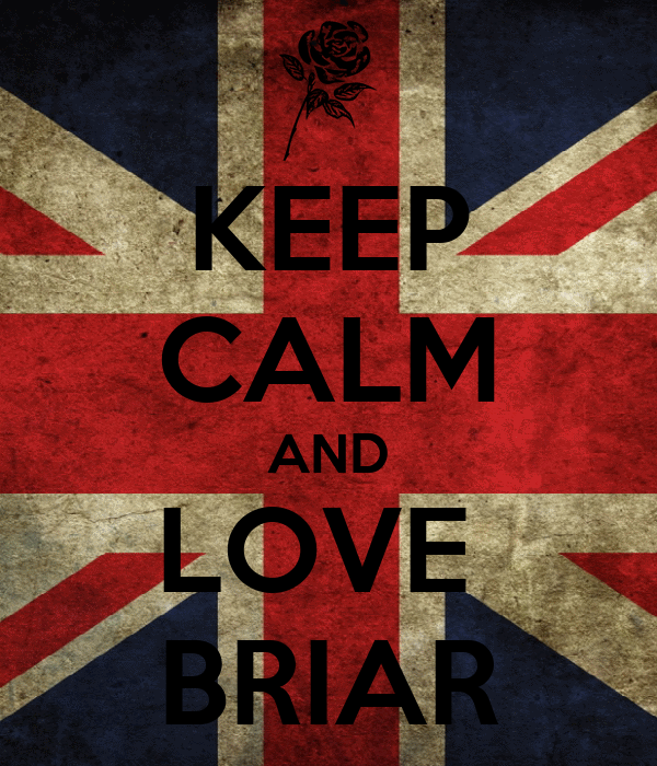 KEEP CALM AND LOVE  BRIAR