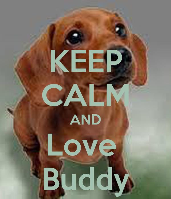 KEEP CALM AND Love  Buddy