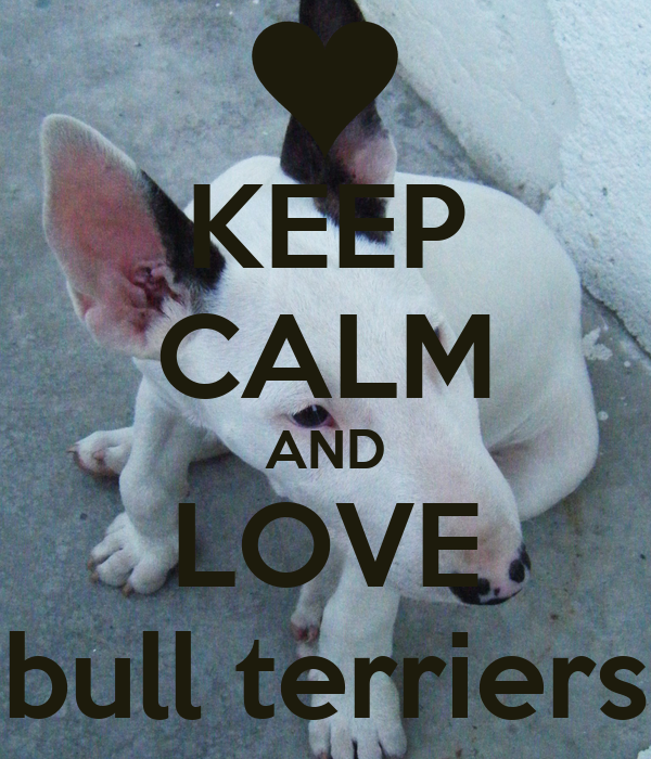 KEEP CALM AND LOVE bull terriers