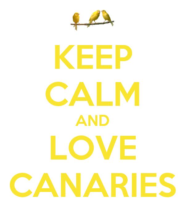 KEEP CALM AND LOVE CANARIES
