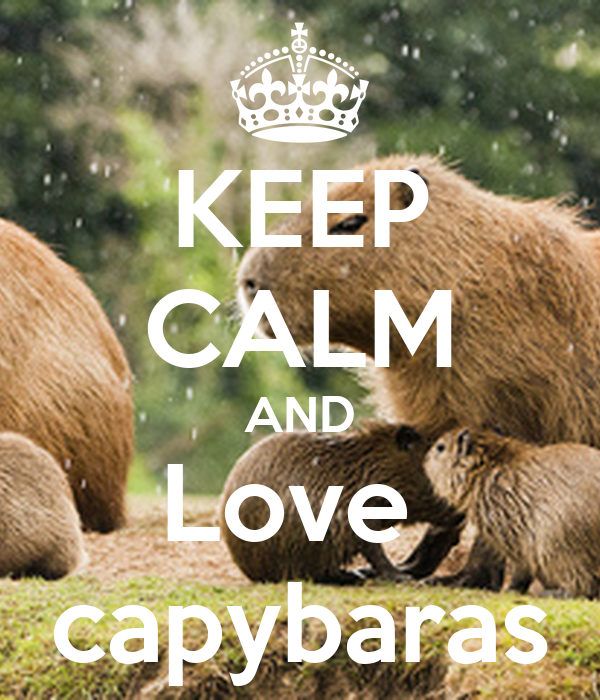 KEEP CALM AND Love  capybaras